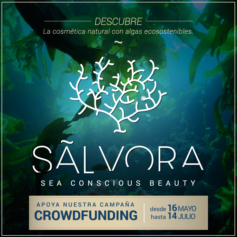 Sálvora ~ Sea conscious beauty